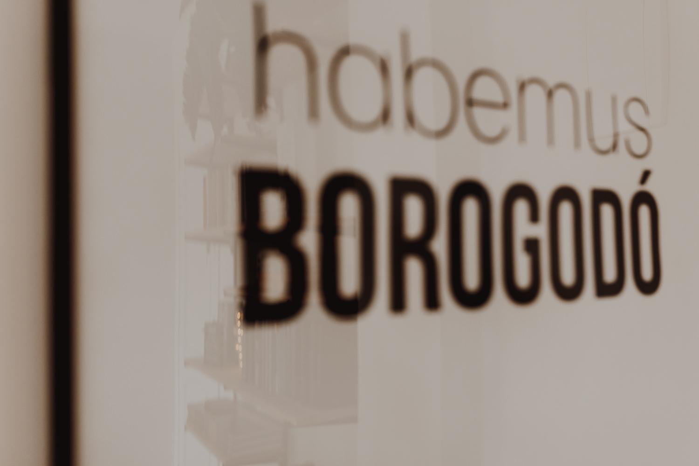 Habemos Borogodo